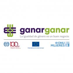 Logo ONU para web-01